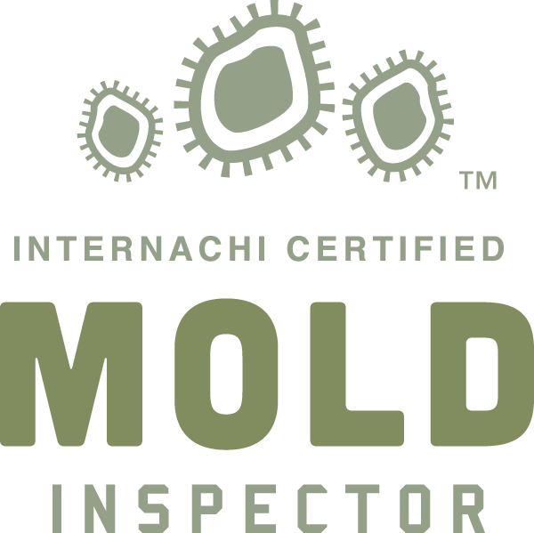 Certified Mold Inspector in Concord, Salisbury and Kannapolis, N.C.