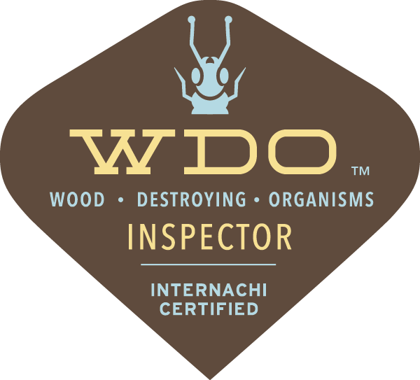 Termite Inspections in Charlotte, Concord, Salisbury and Kannapolis, N.C.