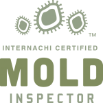 Mold Inspection Concord